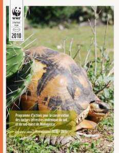 Démarrer une entreprise d'élevage de tortues