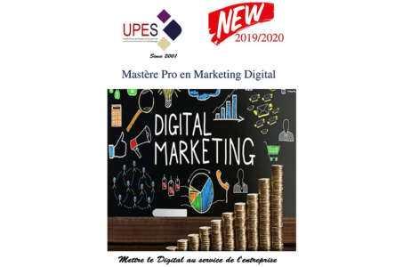 Obtenir une licence de marketing numérique, assurance de permis